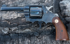 Picture weapons, trunk, revolver, Colt