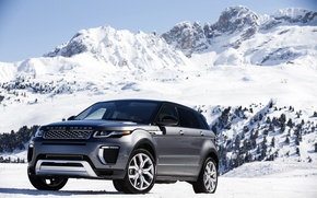 Picture car, snow, trees, mountain, slope, Land Rover, Range Rover, mountain, snow, Evoque, Autobiography