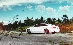 Picture car, Audi, audi a7, hq Wallpapers