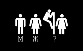 Picture woman, toilet, male
