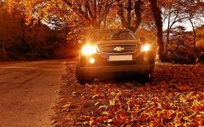 Picture Chevrolet, yellow, Autumn, suv, 4wd, Captiva, awd