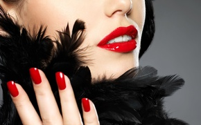 Picture girl, face, feathers, lipstick, lips