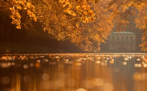 Picture autumn, leaves, Park, water surface