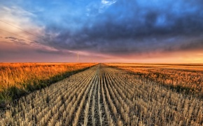 Wallpaper field, clouds, horizon