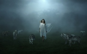 Picture girl, fog, wolves