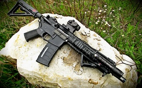 Picture weapons, assault rifle, collimator, magpul, Recon
