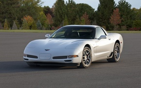 Picture Corvette, Chevrolet, 2001