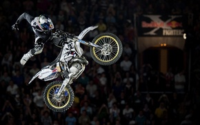 Picture 2010, Red Bull, X Fighters