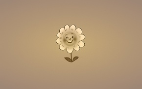 Picture flower, smile, plant, minimalism, Daisy, leaves, dark background