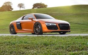 Picture Audi, Orange, Wheels, Strasse, Samoa, R8