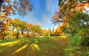 Picture autumn, the sky, grass, trees, Park, shadow, bench