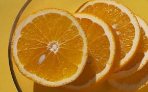 Picture orange, orange, food