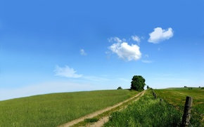 Wallpaper road, greens, field, the sky, nature