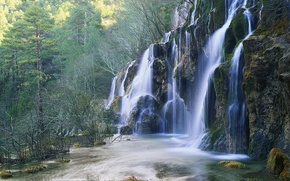 Picture forest, trees, waterfall