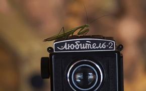 Picture retro, the camera, Amateur