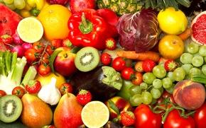 Picture lemon, apple, Apple, orange, watermelon, kiwi, strawberry, grapes, pepper, pineapple, tomato, peach, cabbage, orange, peach, …