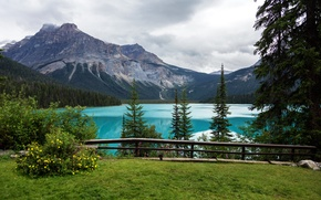 Picture trees, mountains, lake, view, Canada, Playground, Yoho National Park