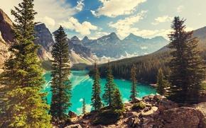 Picture forest, lake, Canada, landscape, lake, Banff National park, Moraine