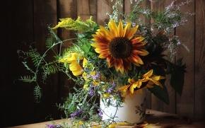 Picture flower, nature, life, flowers, autumn, bouquet, fall, still
