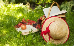 Picture summer, grass, nature, basket, books, Apple, hat, hat, plaid, straw