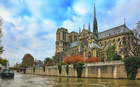 Picture the sky, river, France, Paris, Hay, Notre Dame Cathedral