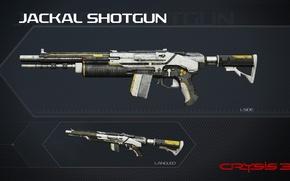 Picture Crysis, gun, game, weapon, shotgun, Crysis 3, Texture, SCI Fi, CryEngine, Critek, official wallpaper, Jackal, …