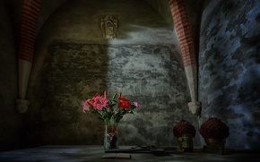 Picture flowers, background, the crypt