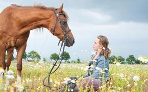 Wallpaper horse, chamomile, girl