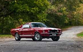 Wallpaper background, Mustang, Ford, Shelby, GT500, Ford, Mustang, Muscle car, Muscle car, Shelby, with LeMans stripes ...