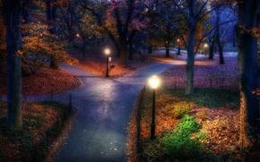 Wallpaper road, Park, night