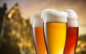 Picture beer, glasses, Alcoholic, Beverage