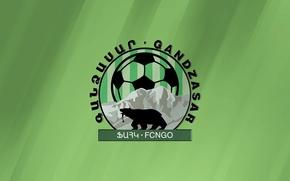 Picture logo, emblem, Armenia, Armenia, Armenian Premier League, Armenian Premier League, Gandzasar, FC Gandzasar, FC Gandzasar, …