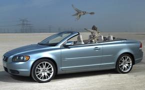 Picture bird, Volvo, convertible, C70