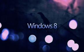 Picture Dark, Windows, Eight