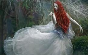 Wallpaper forest, girl, dress, Dream, Agnieszka Lorek, Wiki