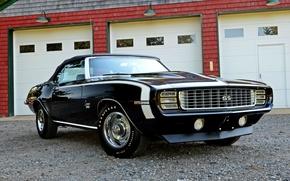 Picture Chevrolet, 1969, Camaro, Chevrolet, Camaro