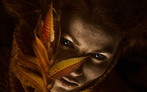 Picture sheet, lighting, freckles, Autumn