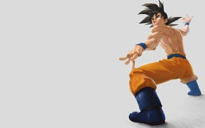 Picture minimalism, grey background, dragon ball, dragon, son Goku, dragon ball, dragonball
