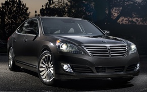 Picture lights, Hyundai, the front, Hyundai, Equus, ekus