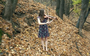 Picture autumn, girl, music, violin