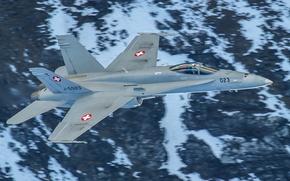 Picture flight, weapons, fighter, multipurpose, FA-18C Hornet