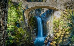 Picture trees, bridge, stones, waterfall, stream, Washington, USA, the bushes, Mount Rainier National Park, Christine Falls