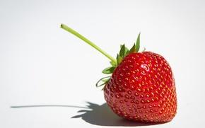 Wallpaper macro, white background, strawberry, berry