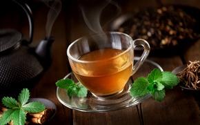 Picture tea, kettle, couples, Cup, cinnamon, mint, saucer, welding