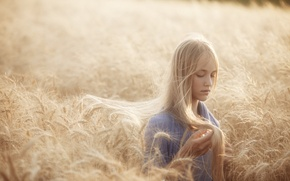 Picture light, hair, rye, Girl, blonde