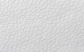 Picture mesh, Wallpaper, web, saver, relief, irregularities