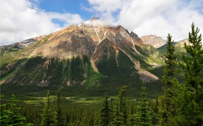 Picture the sky, trees, mountains, Canada, Albert, Jasper National Park, Pyramid Mountain