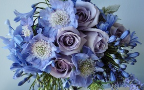 Picture flower, flowers, roses, bouquet, field, beautiful, lilac