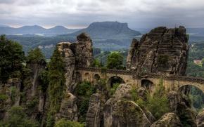 Wallpaper forest, mountains, bridge, rocks, Germany, national Park