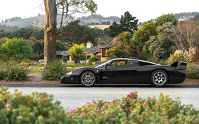 Wallpaper Maserati, supercar, garden, MC12, black, black